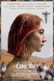 Lady Bird: Vuela a casa
