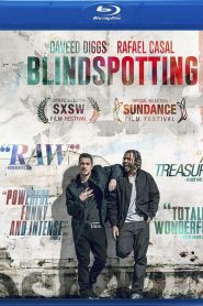 Punto ciego ( Blindspotting )
