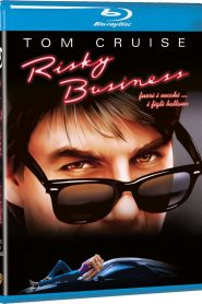Risky Business HD 1080p x265 HDR