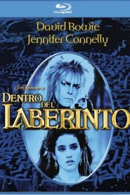 Dentro del laberinto HD 1080p x265