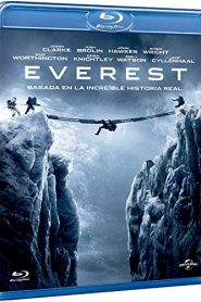 Everest HD 1080p x265
