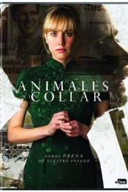 Animales sin collar WEB-DL 1080p x265