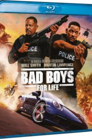 Bad Boys for Life DVDRip