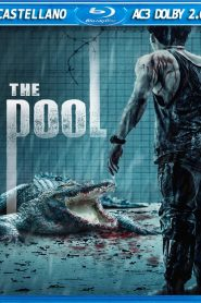 The Pool MicroHD 720p