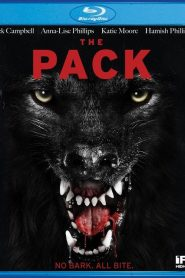 The Pack MicroHD 720p