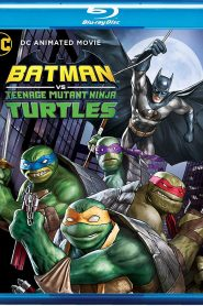 Batman vs. las Tortugas Ninja HDRip