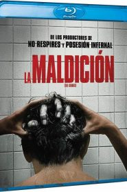 La maldición (The Grudge) Micro 1080p