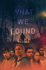What We Found WEB-DL m1080p