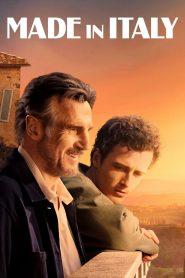 Made in Italy WEB-DL m1080p