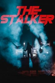 The Stalker WEB-DL m1080p