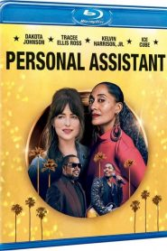 Personal Assistant MicroHD 720p