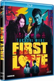 First Love MicroHD 1080p