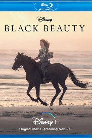Black Beauty HDRip