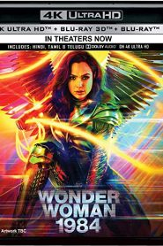 Wonder Woman 1984 WEB-DL 2160p 4K