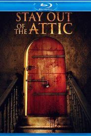 Stay Out of the Attic WEB-DL m1080p